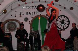 fiesta-de-flamenco-gitano_edited