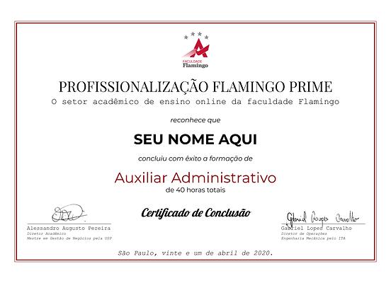 Molde de Certificado Flamingo Prime.png