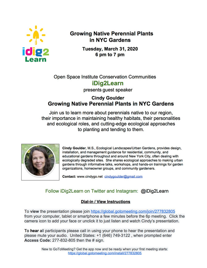 iDig2Learn's 1st Webinar with Cindy Goulder