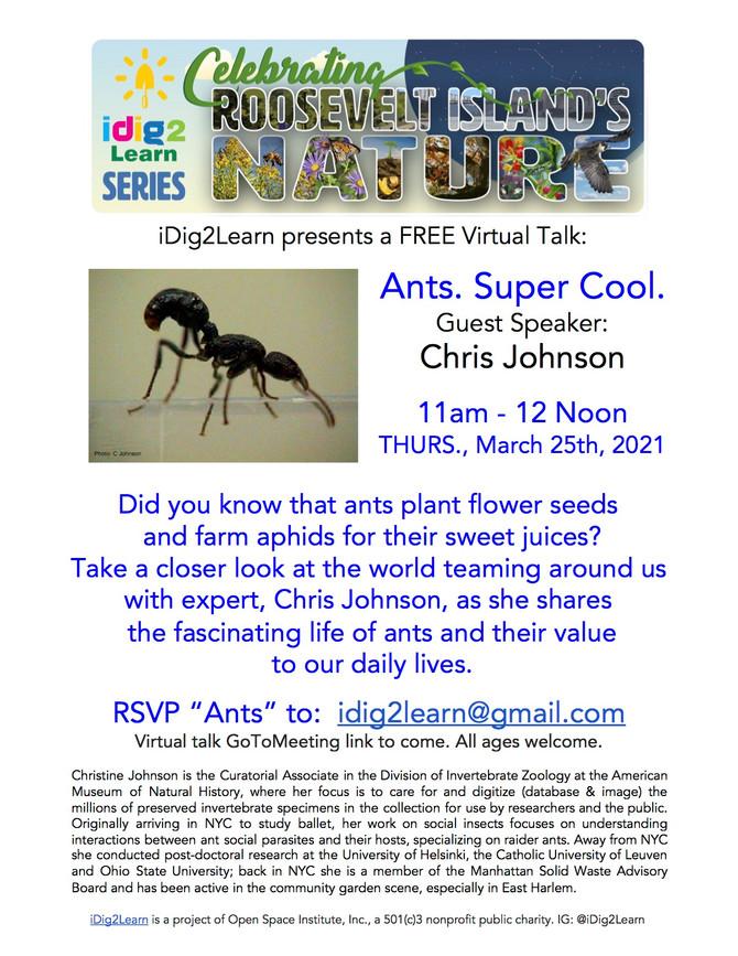 11am 3/25 Ants. Super Cool. Guest speaker Chris Johnson