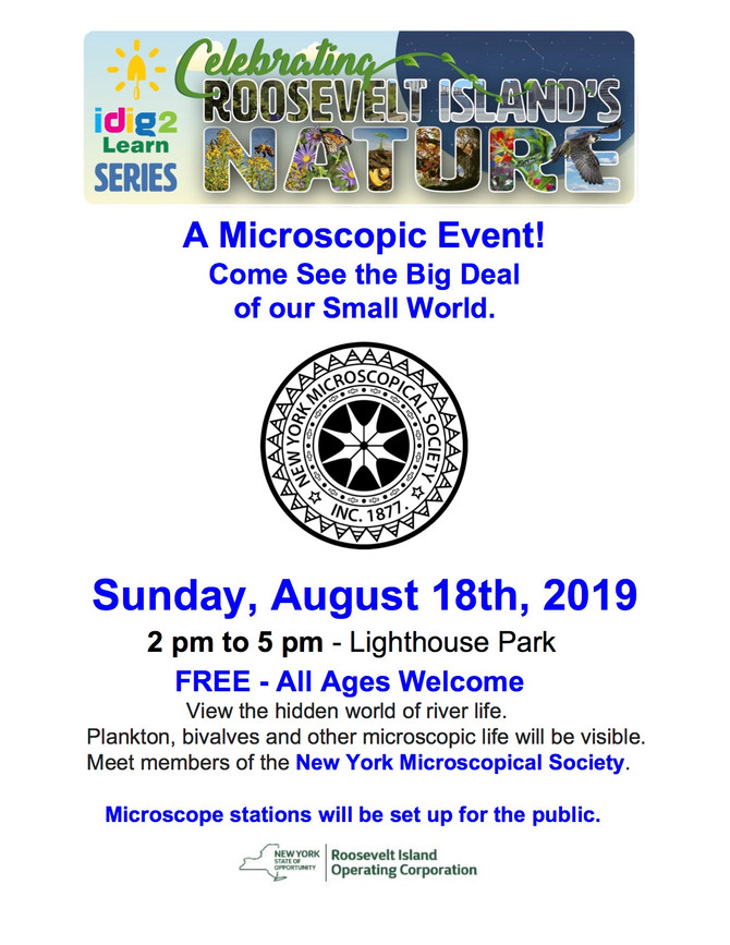 A Microscopical Event! Sunday AUG 18th