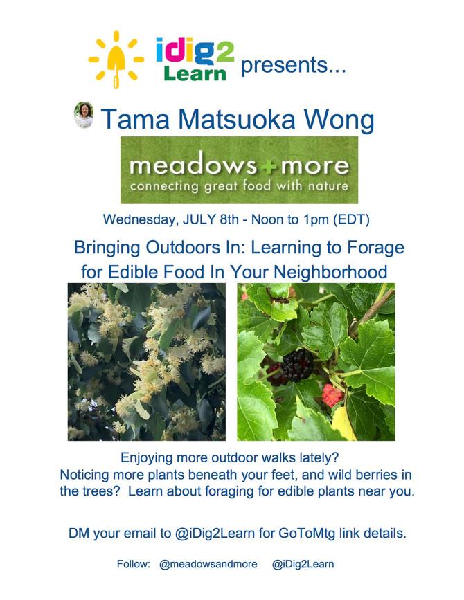 Noon 7/8/20 iDig2Learn presents Tama Matsuoka Wong