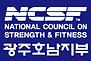 NCSF로고(지부로고).png