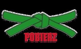 POBIERZ.png
