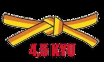 4.5 kyu.png