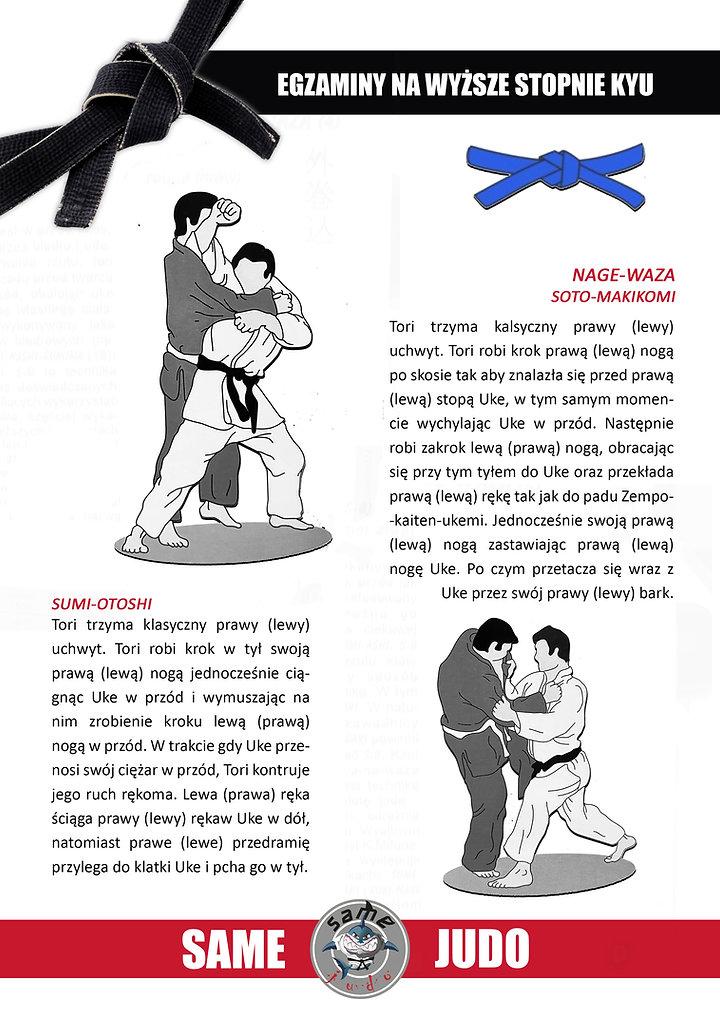 8 str.jpg