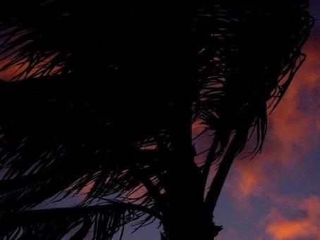Honolulu, Hawaii: 6 Best Things To Do On Oahu.