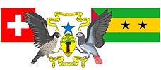 Logo CCI CH-STP png.png