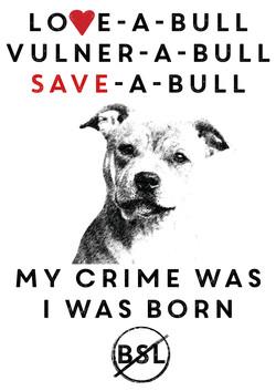 Staff Bull terrier Tee Shirt designs7