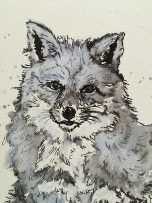 Fable Fox.JPG