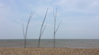 Sea Trees Residency at Aldeburgh Beach Lookout Gallery