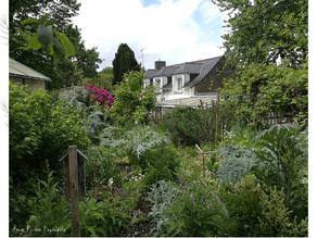 Un point sur notre jardin expérimental en mai 2021