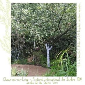 Chauler le tronc des arbres : une solution esthétique et naturelle pour protéger les arbres