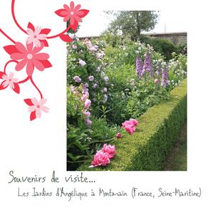Visite de jardin : les Jardins d'Angélique à Montmain (Seine-Maritime)