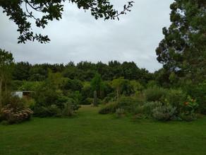 L'Ile-Jardin de Kervolan (Saint-Molf, Loire-Atlantique)
