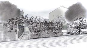 Nouveau projet : Réflexions sur l'organisation d'un jardin de ville pour des amoureux du végétal
