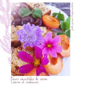 Petites gourmandises florales de saison