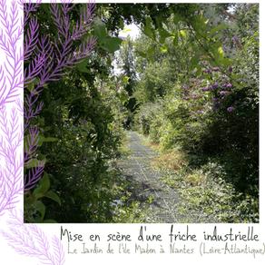 Le jardin de l'Ile Mabon : une friche industrielle naturellement habitée, en plein centre de Nantes