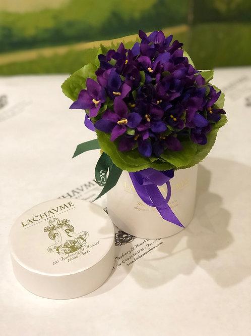 "Le bouquet violettes ""Illusion"" Lachaume ""Illusion"" violets in Lachaume's box"