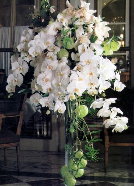 Cascade banche d'orchidées