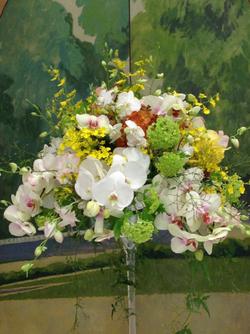 Bouquet précieux d'orchidées