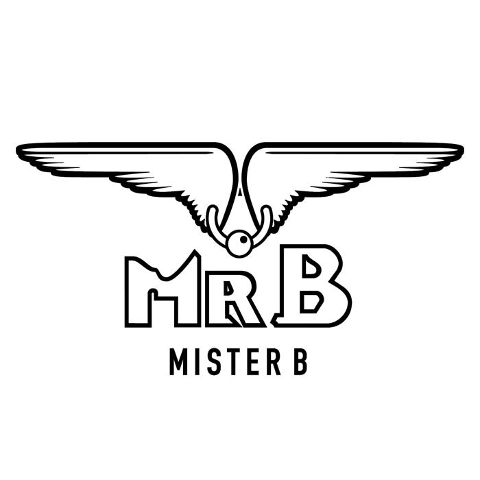 mr. b_