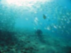 Plongeur de l'USB à Biarritz