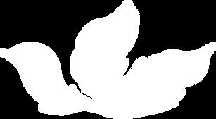 HOI white leaf.png