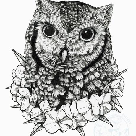 Owl and Primrose