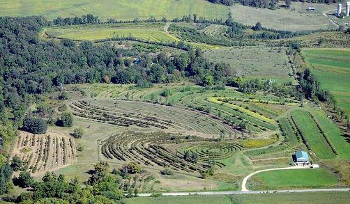 regeneration-agriculture-agroforesterie-
