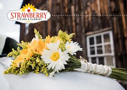 Strawberry Fields Hydroponic Farm and Floral Boutique