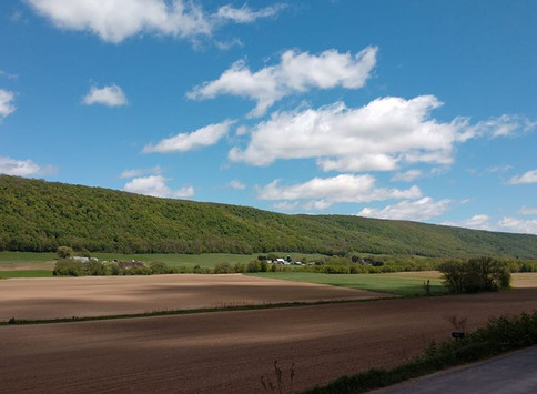 Living in Otisco Valley....come along on a natural living journey!