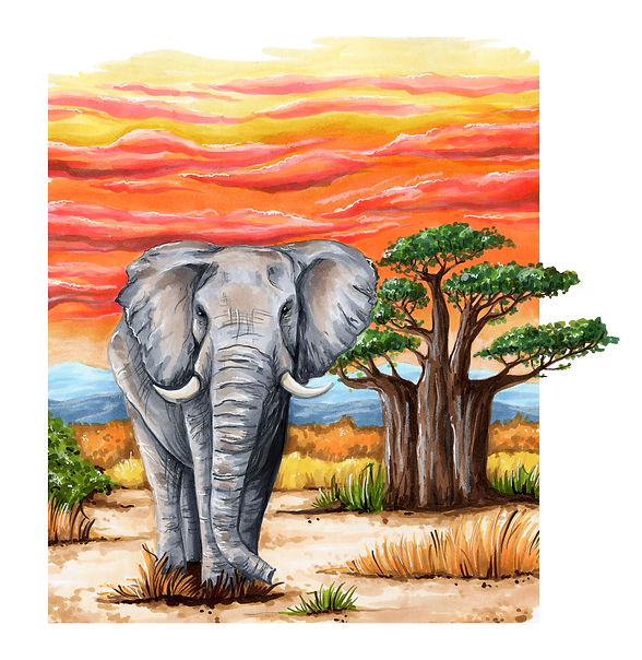 слон и баобаб.jpg