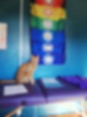 Sushi, le chat de la maison qui attend son soin Reiki.