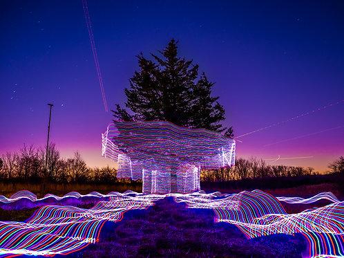 Neon Tree V1