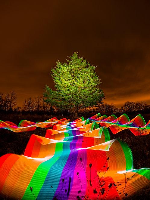 Neon Tree V2