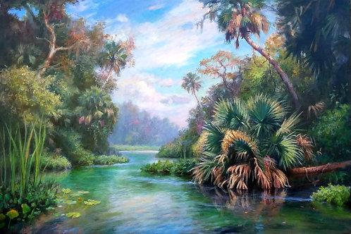 Wekiva Palms