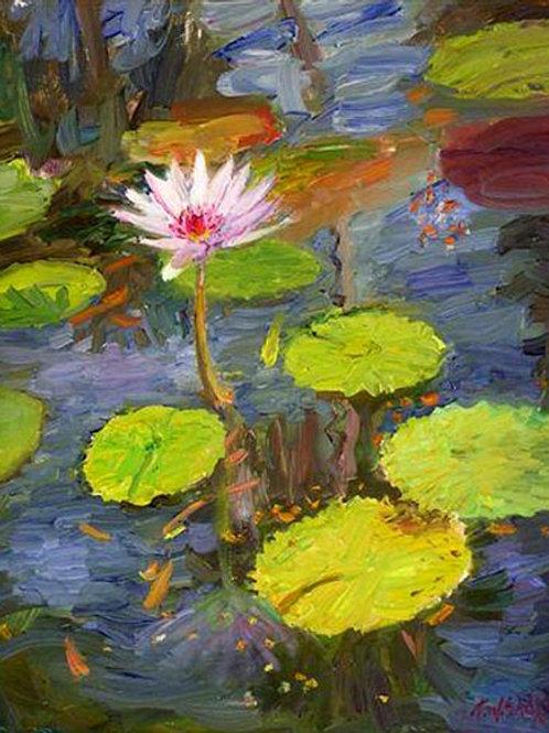 McKee Lily