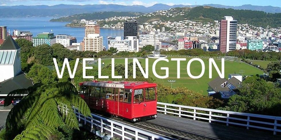 Wellington Gasshuku (Nov/Dec 2019)