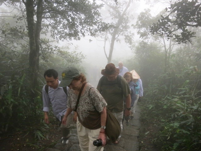 Photo: In the clouds on Yen Tu Mountain, 2013