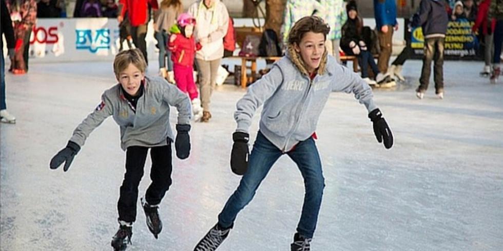 Ieșire la patinoar