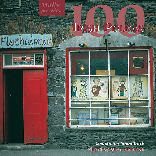 100 Irish Polkas CD - Dave Mallinson