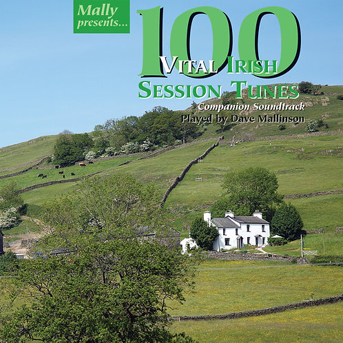 100 Vital Irish Session Tunes CD - Dave Mallinson