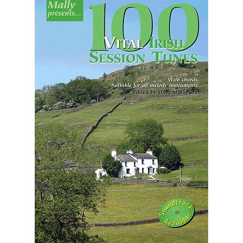 100 Vital Irish Session Tunes Book - Dave Mallinson