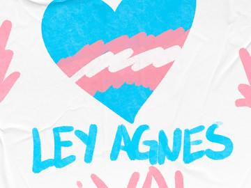 Ley Agnes - Ley Trans en Puebla ya es una realidad
