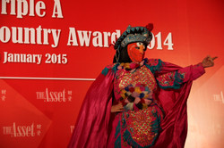 The asset Triple A Country Award 14