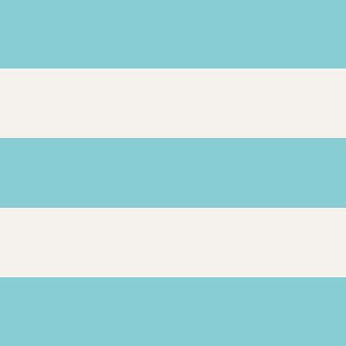 racing-stripes-2.jpg