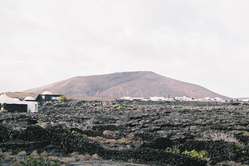 Poetica natura - Lanzarote 11  - Debbie