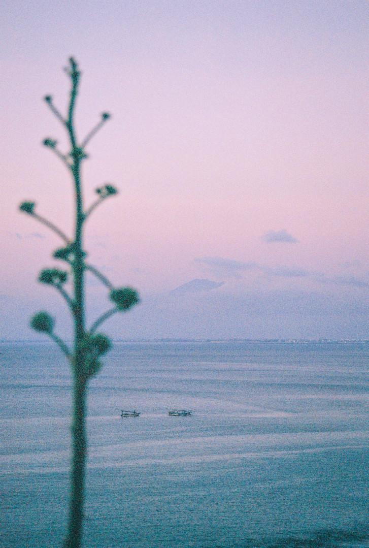 Travel fragments - Misc Bali 3jpg.jpg
