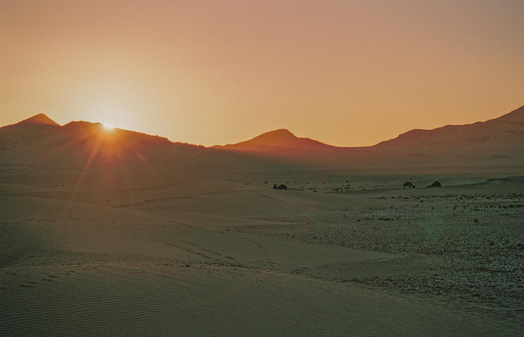 Vivid fragments of Morocco - Zagora 2 -